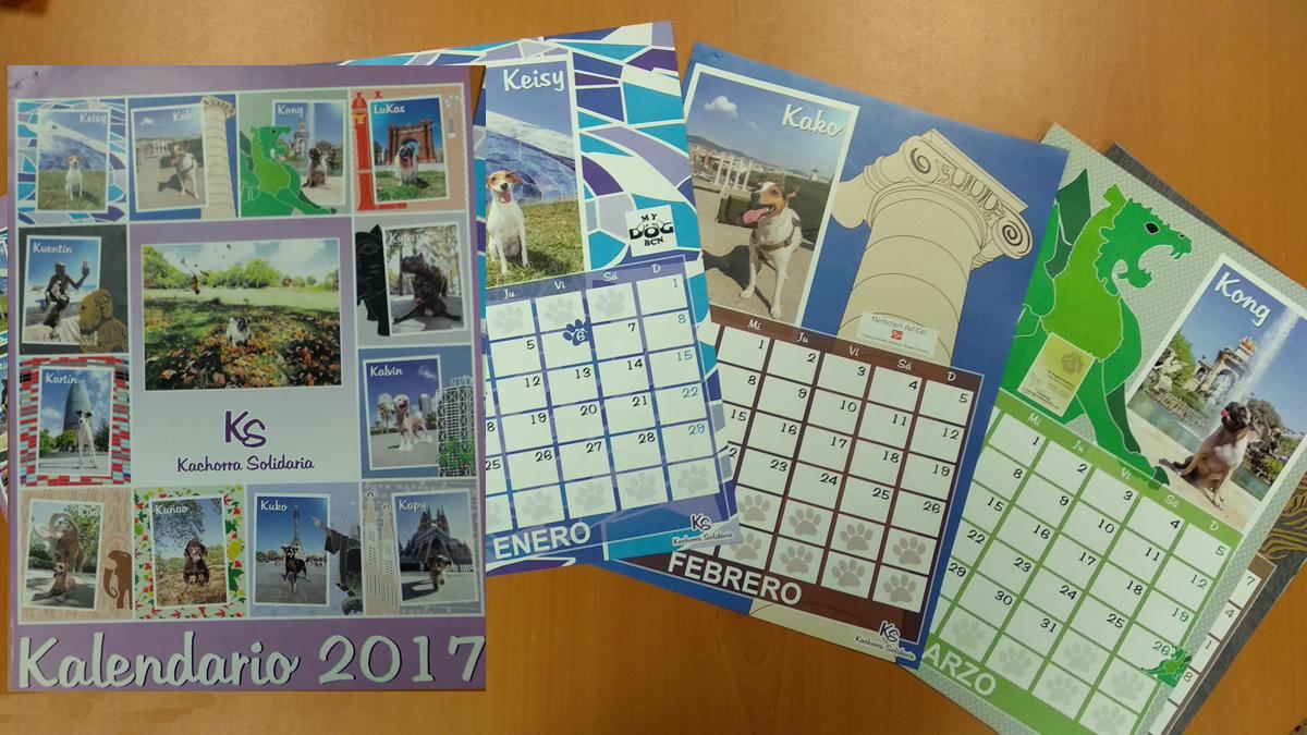 Calendario Solidario 13 hojas